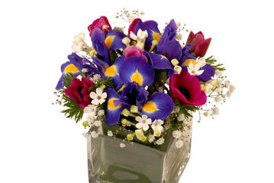id e cadeau f te des grands m res envoyez lui des fleurs. Black Bedroom Furniture Sets. Home Design Ideas
