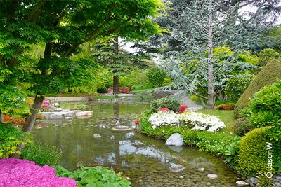 Entr e gratuite dans le magnifique jardin albert kahn for Jardin anglais albert kahn