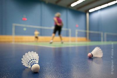 terrain badminton paris