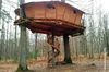 bon plan idee cadeau insolite cabane dans les arbres