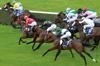 course de chevaux hippodrome saint cloud