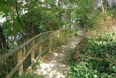 Visite guid e gratuite d 39 un jardin 100 nature montmartre for Jardin gratuit paris